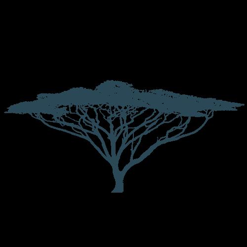 silhouette-arbre-africain-moushenco