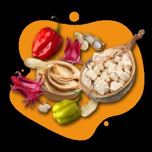 visuel-fruits-secs-site-web-moushenco